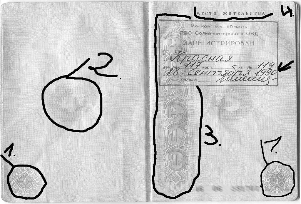 passport_strona4-5_01.jpg